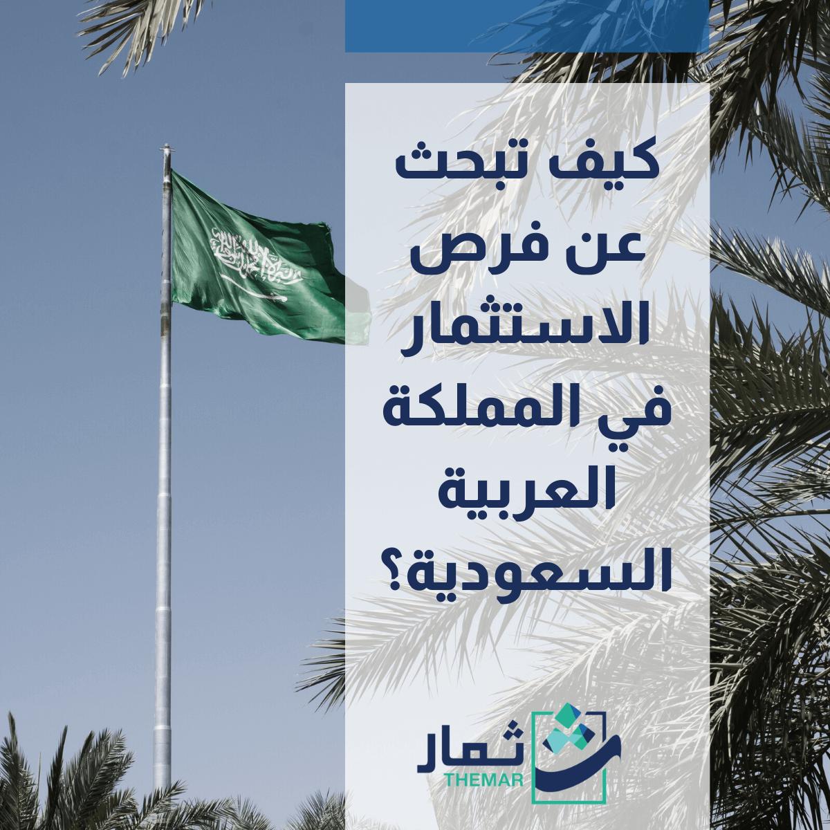 فرص الاستثمار في السعودية